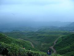 View of Mount Halimun