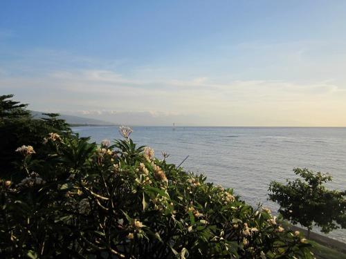 Serene view of Lovina Beach